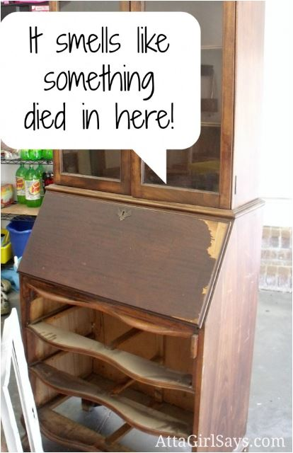 how to remove smells in thrift store furniture