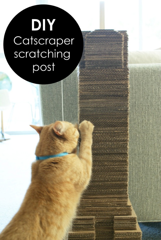 DIY Catscraper Cat Scratching Post Maison Kuotidien